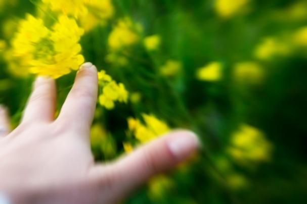 spring0821.jpg