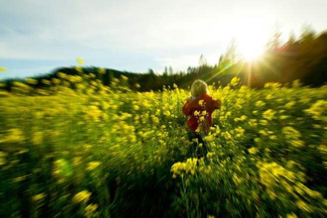 spring085.jpg