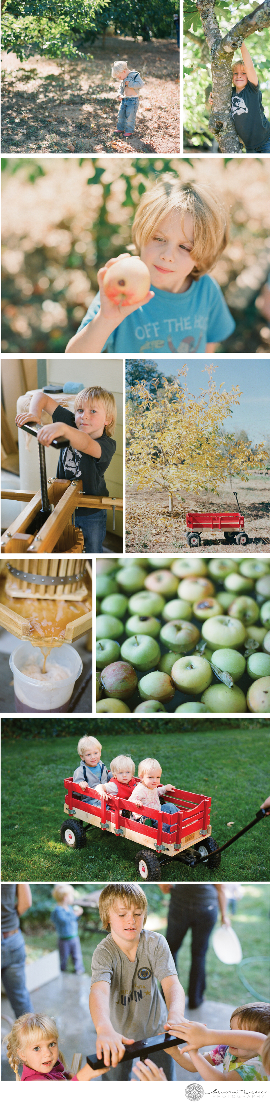 applepressing